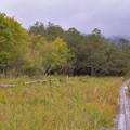 Photos: 秋は急ぎ足で・・