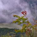Photos: 雲と風と
