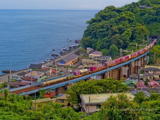 玉川橋梁をゆくEF66-133コンテナ列車