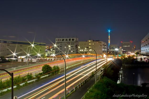 夜の夢の島大橋と東京スカイツリー