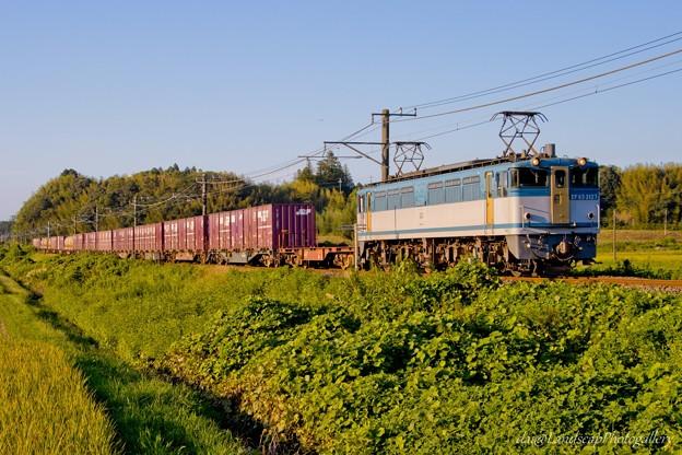 EF65 2127 鹿島貨物