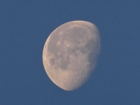 早朝に浮かぶ月 - 1