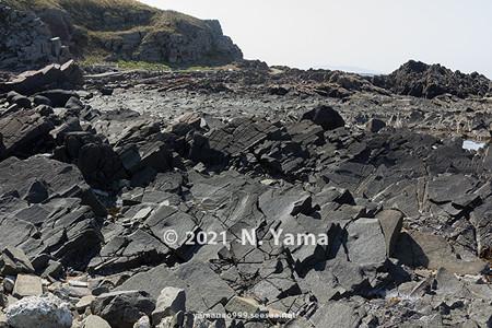 2021年4月3日、大島海岸風景