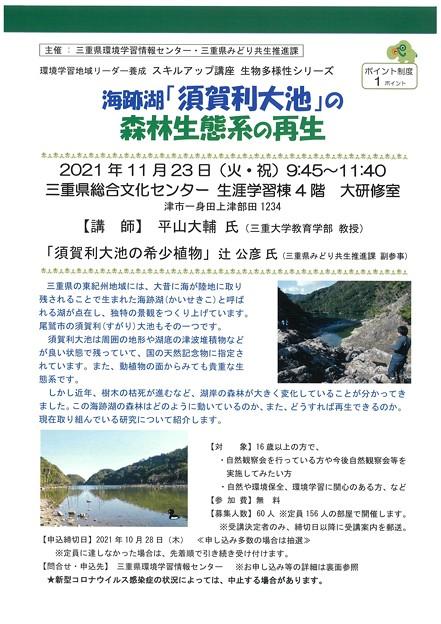 須賀利大池の森林生態系1