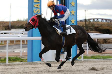 ワンダフルライフ レース(120/12/30・1R)