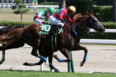 トゥルボー レース(21/07/31・第23回 新潟ジャンプステークス)