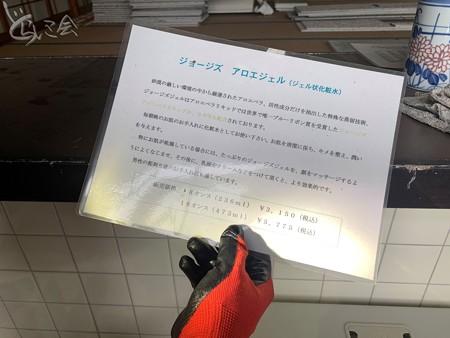 20210823 oiketansaku_haikyo006